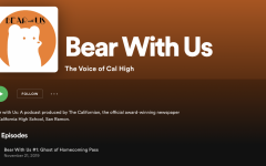 Landing page for Podcast Bear With Us