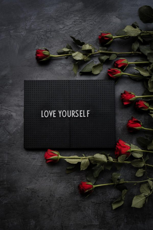 sign, love yourself, with roses