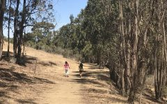 Two girls hiking through tall trees