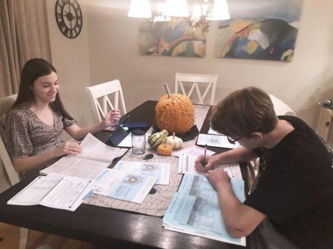 Male, female twins at kitchen table filling out ballots