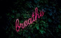 breathe as neon sign